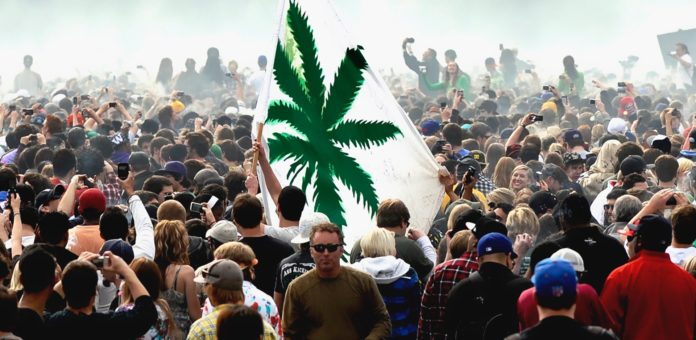 Highest Cannabis Population