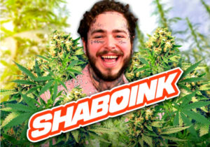 Post malone Shaboink