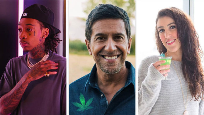 Top Rated Cannabis Influencers With High Growth Rates