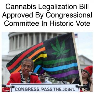 Marijuana decriminalization bill passe by us house committee