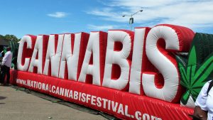 National Cannabis Festival 2020