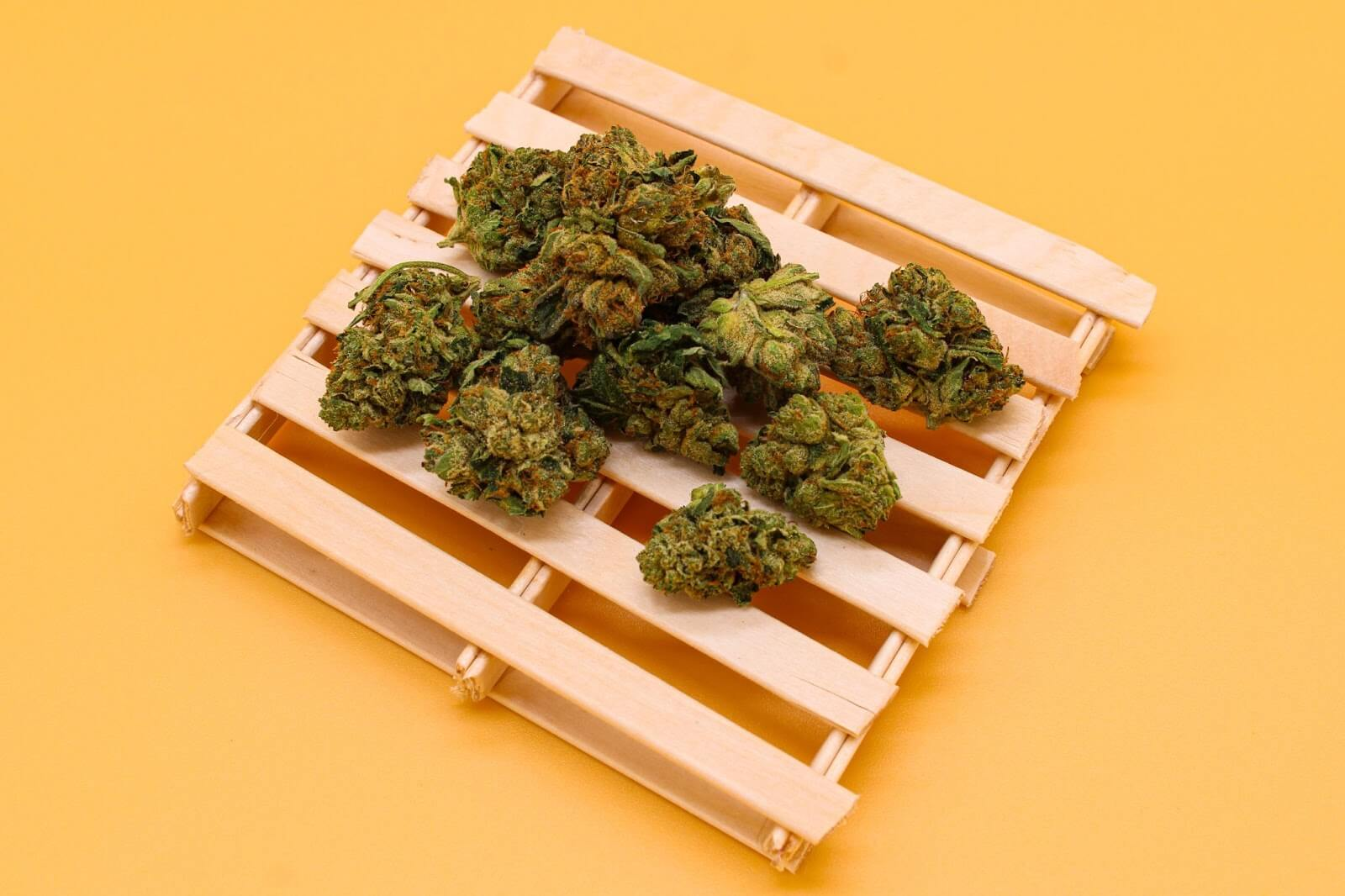 How to dry cannabis quickly
