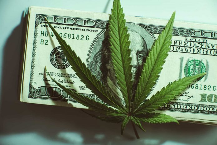 How to get paid while using cannabis