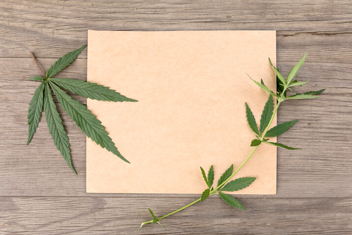 Hemp Leaves On Hemp Paper