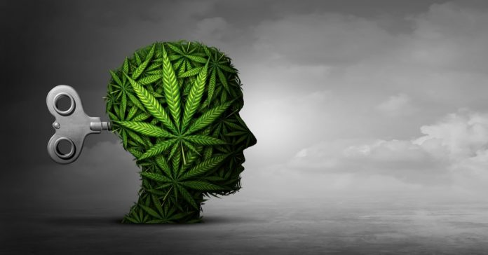 Marijuana Effects on Mind