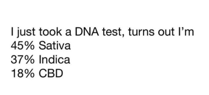 Weed DNA Test Meme