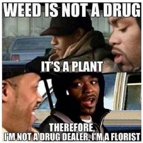 Weed Is Not Drug Memes