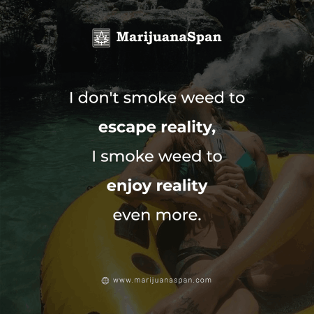 Smoke weed to enjoy reality not to escape it.