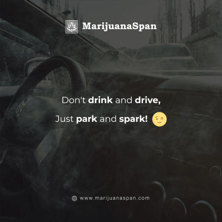 Do not drive if you're drunk, just park & spark!