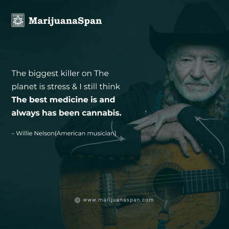 Best Stoner quote of Willie Nelson.