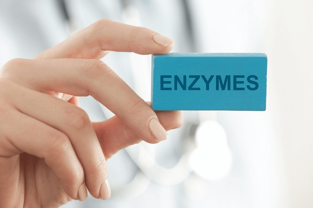 benefits of enzymes