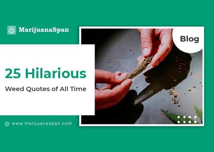 Best 25 Weed & Stoners Quote in 2021.